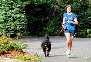 Ideas and Safety Tips to Exercise with Your Dog